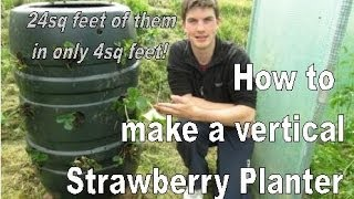 How to Build a Vertical Strawberry Tower - 24 Plants in 4sq Feet!