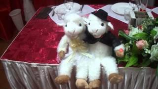 Прикол у меня на свадьбе!!! Песня жениха и невесты 23 января 2015 г. Омск!