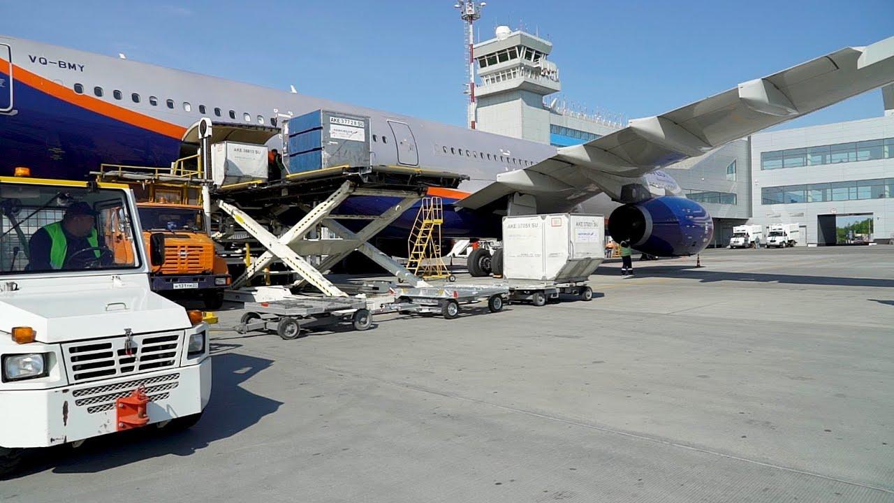 Международный аэропорт Хабаровск: как работает багажная система