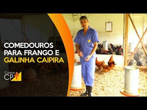 Clique e veja o vídeo Conheça os tipos de comedouro para criação de frango e galinha caipira