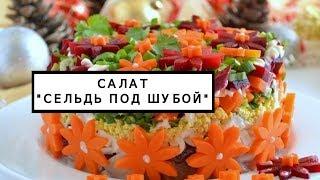 Салат сельдь под шубой рецепт с фото в новом оформлении