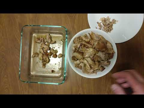 CLEANING KIKKOMAN TERIYAKI BASTE + GLAZE COOKED CHICKEN THIGHS