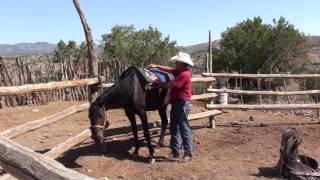 USA - New Mexico - U-Trail: Saddle up a horse