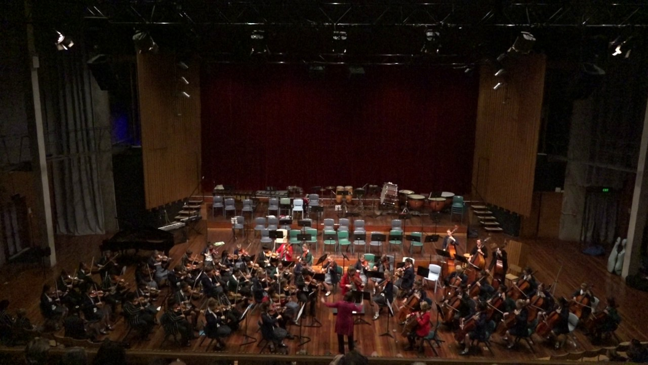 Palladio Karl Jenkins Combined String Orchestra