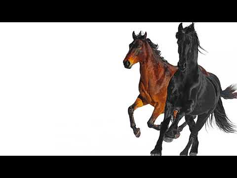 Lil Nas X - Old Town Road feat Billy Ray Cyrus Remix