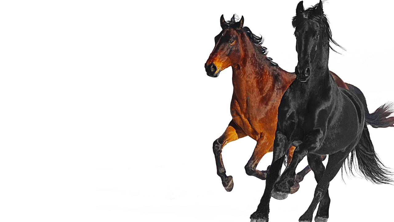 Lil Nas X Old Town Road (Remix)