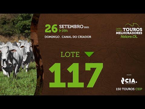 LOTE 117 - LEILÃO VIRTUAL DE TOUROS 2021 NELORE OL - CEIP