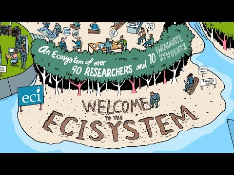 Welcome to the ECI-system