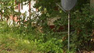 Newborn Abandoned Along Roadside Near White Cloud - 9&10 News