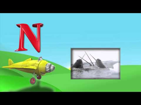 What animals begin with the letters M and N? - From I Love My ABC's! - Animals on DVD