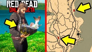 SECRET FISHING SPOTS YOU NEED TO KNOW ABOUT in Red Dead Online! RDR2 Online Money!