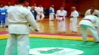 Ushiro geri - spinning back kick