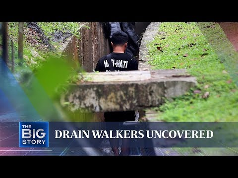 Singapore's mysterious 'drain walkers'   THE BIG STORY   The Straits Times