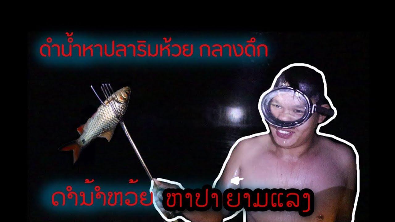 ดำน้ำหาปลาริมห้วยตอนกลางดึก / ດຳນ້ຳຫາປາ  ຕອນແຄມນ້ຳຫ້ວຍ ຕອນກາງຄືນ