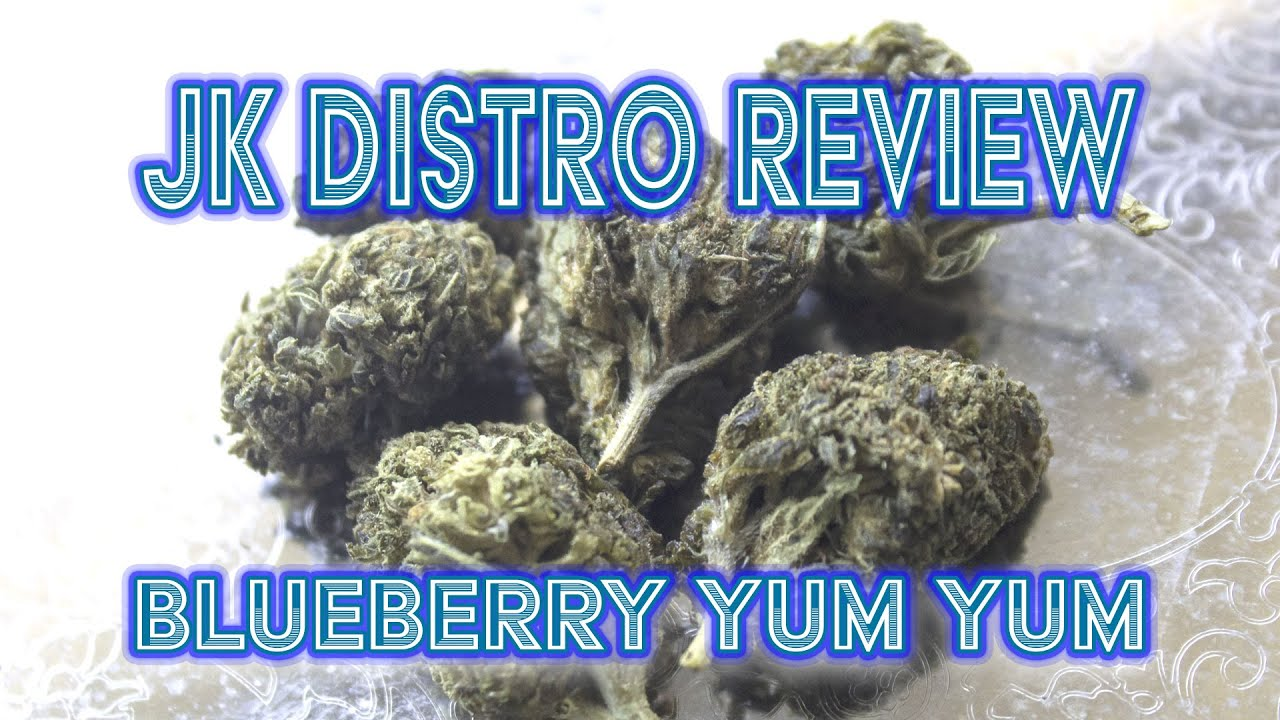 Delta 8 CBD Flower Review (Blueberry YUM YUM) JK Distro