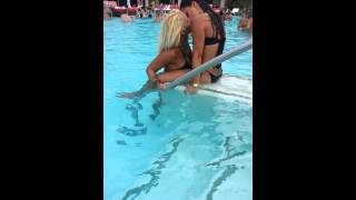Las Vegas Pool Party | Palms Pool Party