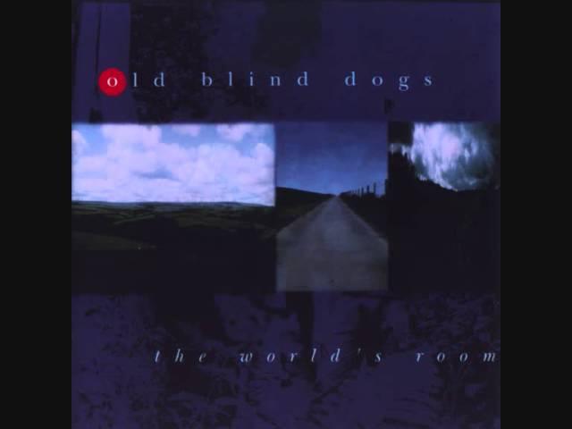 old-blind-dogs-battle-of-waterloo-danisantschi