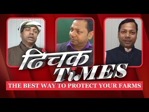 Dhinchak Times | The Best Way To Protect Your Farms