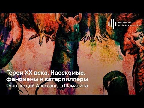 «Герои XX века. Насекомые, феномены и катерпиллеры». Лекция Александра Шамарина