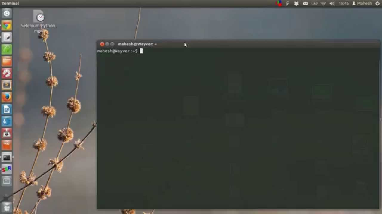 python webdriver