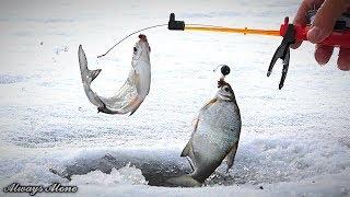 Зимняя рыбалка СЧАСТЬЕ РЫБАКА когда нашёл рыбу Ловля белой рыбы и окуня Отличный клёв