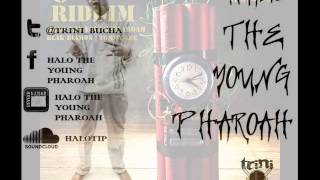 HALO THE YOUNG PHAROAH - PIGGY BANK [C4 RIDDIM]