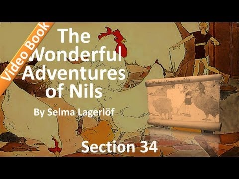 34 - The Wonderful Adventures of Nils by Selma Lagerlöf - Westbottom and Lapland