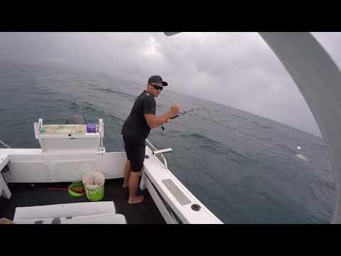 Sunshine Coast Fishing