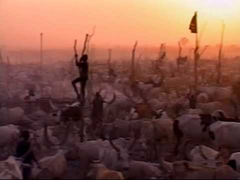 Dinka: The Legendary Cattle Herders of South Sudan by Oscar Mann (Box 24501-00502, Kenya)