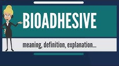 What is BIOADHESIVE? what does BIOADHESIVE mean BIOADHESIVE meaning, definition & explanation