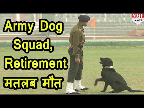 Army Dog के लिए Retirement का मतलब death
