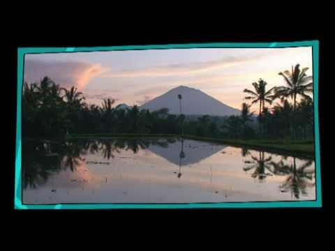 Bali : Un environnement exceptionnel