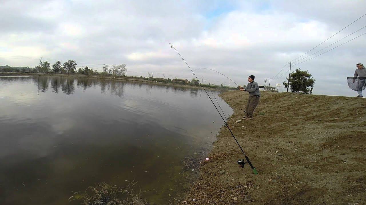 Fishing santa ana river lakes chris 39 pond youtube for Santa ana river lakes fishing