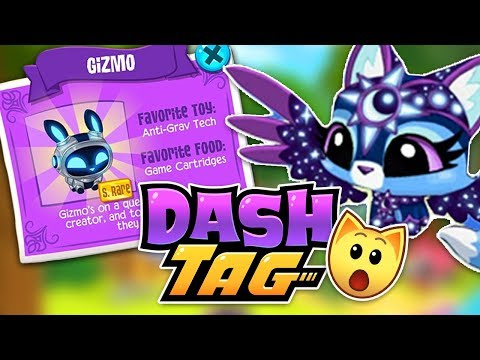 Dashtag New App First Impressions, Rare Pets And Codes