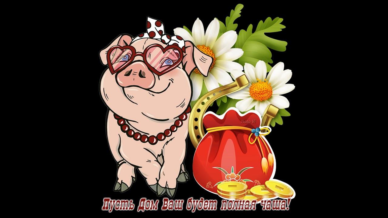 Самые смешные поздравления с новым 2019 годом свиньи, днем рождения людмила