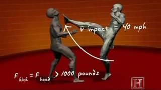 обучение правильные удары ногами руками комбинации   MMA, Kung Fu and sambo