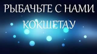 Зимняя рыбалка 2020 Казахстан Кокшетау оз Копа