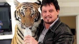 My Pet: A Tiger
