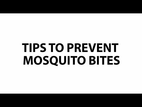 how to stop no see um bites from itching