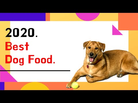 Top 10 Best Dog Food In 2020 | You Need To Know Before Buy.