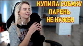 GTFOBAE | Купила Собаку - Парень Не Нужен