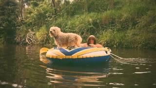 Video Captain Kimmy at Neurum Creek download MP3, 3GP, MP4, WEBM, AVI, FLV Oktober 2018