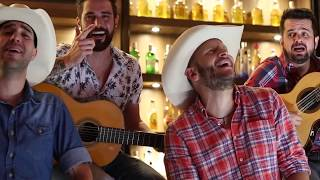 Alexandre e Adriano ft Matheus Minas e Leandro De volta a raíz