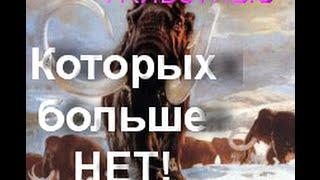 Вымершие животные! ИНТЕРЕСНЕЙШИЙ ФАКТ!