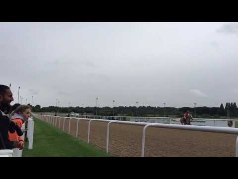 pony racing wolverhampton race 2
