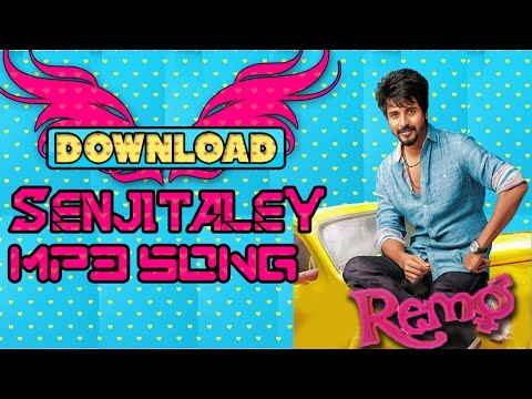 Download ➤🎵🎶 Senjitaley Mp3 Song🎵🎶 👉Remo ( 🎧Watch Video Song Also 🎧)