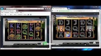 Sunnyplayer und Sunmaker gleichzeitig gespielt mit Echtgeld