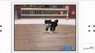 Nintendogs Day 1 - Picking Our Puppy