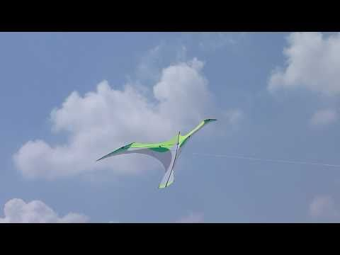 Flying Wings' Green Laima Kite Designed by Bell Chiu