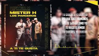 Mister H ft Los Parceros - A TI TE GUSTA (VIDEO LYRICS OFICIAL)